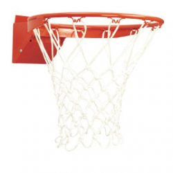 Basketball Recreational Flex Goal